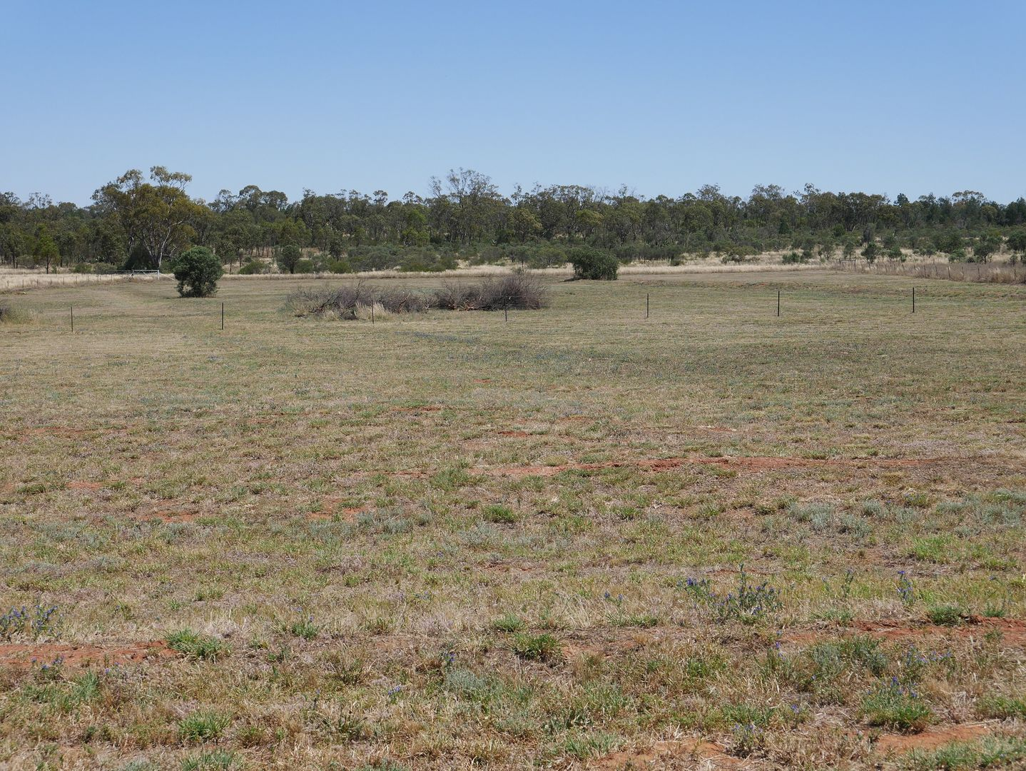 3 Qualitary Road, Merungle Hill NSW 2705, Image 1