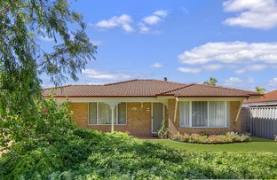 Picture of 4 Avocet Boulevard, Geographe WA 6280