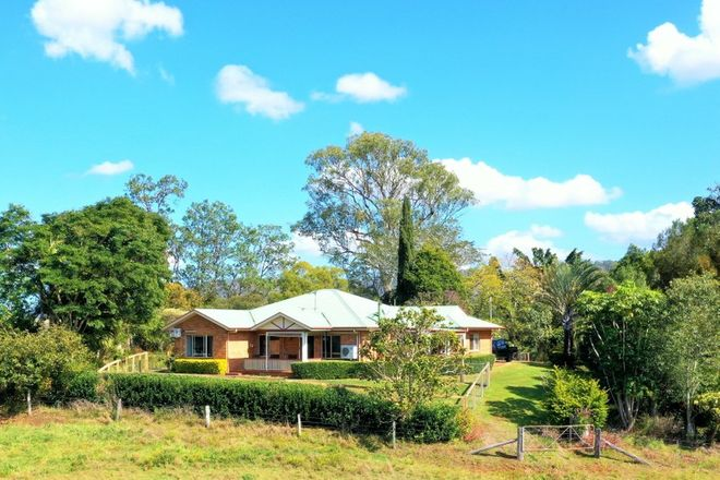 Picture of 979 Afterlee Rd, KYOGLE NSW 2474