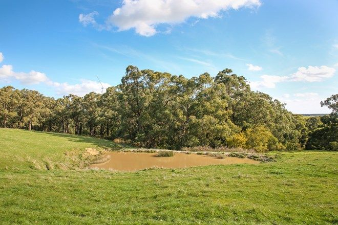 Picture of Turrong Road, COORIEMUNGLE VIC 3268