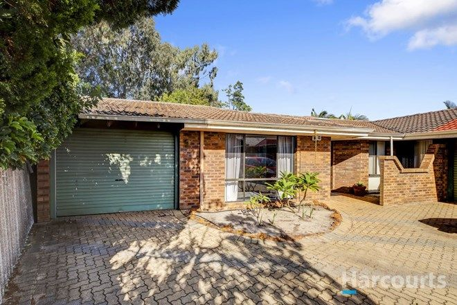Picture of 9 Rodondo Place, SHELLEY WA 6148
