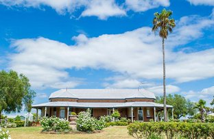 Picture of 51 Forbes Street, Grenfell NSW 2810