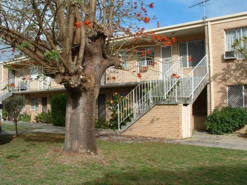 4/62 Morley Drive, Tuart Hill WA 6060, Image 0