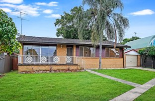 Picture of 48A Hardwicke St, Riverwood NSW 2210