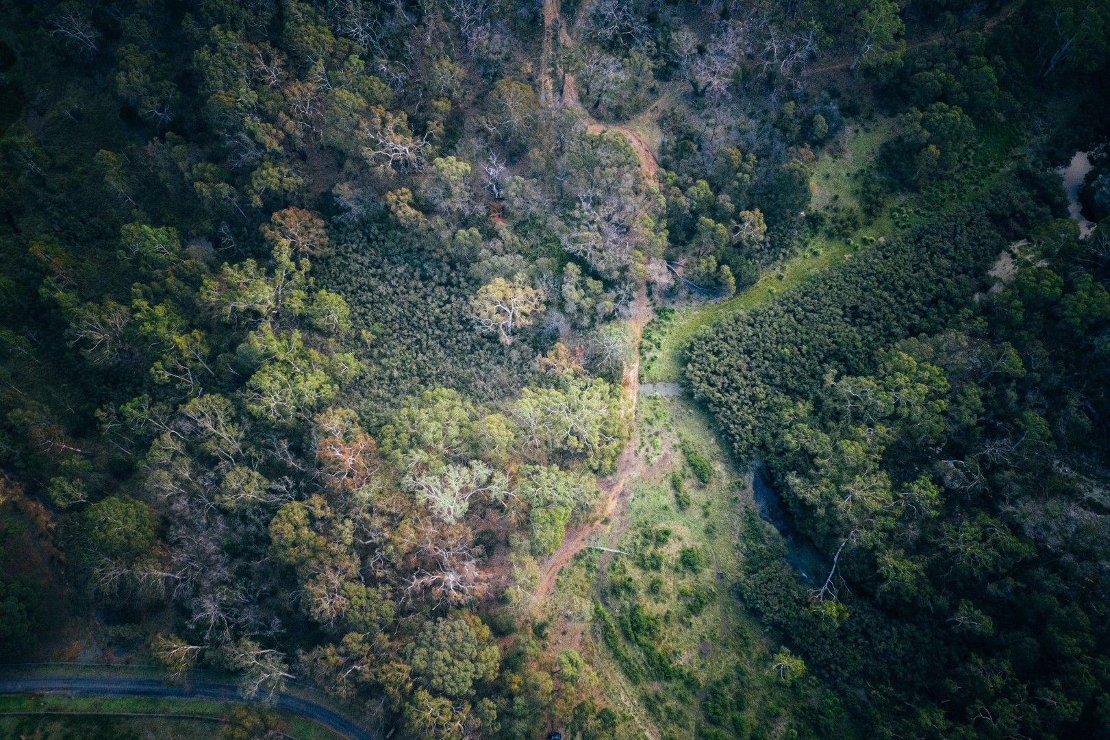 Eucalypt Lane, High Range NSW 2575, Image 0