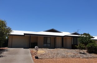 Picture of 17 Marri Drive, Katanning WA 6317