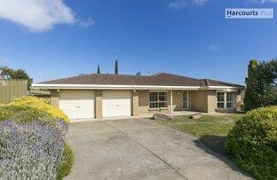 103 Barramundi Drive, Hallett Cove SA 5158