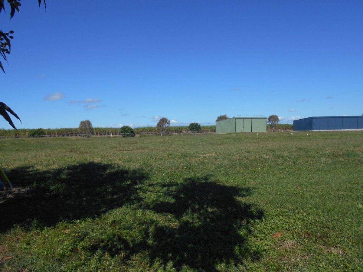 24 Riverdowns Drive, Halifax QLD 4850, Image 1