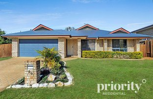 Picture of 29 Pettys Road, Everton Hills QLD 4053
