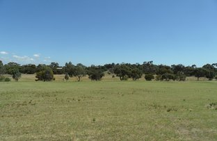 Lot 31 Clancy Road, Gawler Belt SA 5118