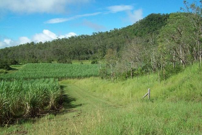 Picture of 617 Devereux Creek Road, DEVEREUX CREEK QLD 4753