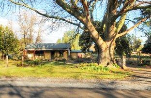 Picture of 15 McNamaras Road, Millgrove VIC 3799
