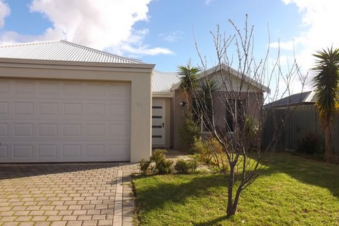 Picture of 37 Westringia Loop, MARGARET RIVER WA 6285
