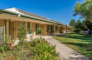 Picture of 33 Mardross Court, North Albury NSW 2640
