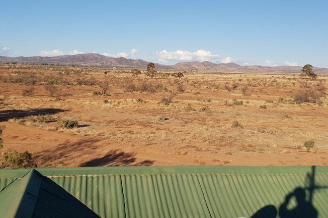 Picture of 56 Telfer Road, HAWKER SA 5434