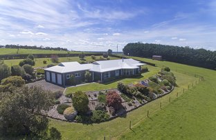 Picture of 1473 Mt Clay  Road, Tyrendarra VIC 3285