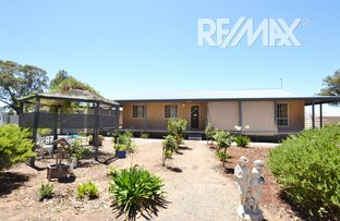 Picture of 9-11 Howell Street, Junee NSW 2663