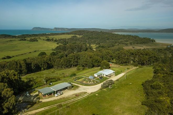 Picture of Lots 3 & 4/777 Cloudy Bay Road, SOUTH BRUNY TAS 7150