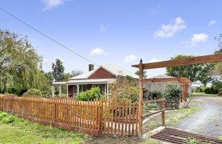 Picture of 140 Irrewillipe - Pirron Yallock Road, Irrewillipe VIC 3249