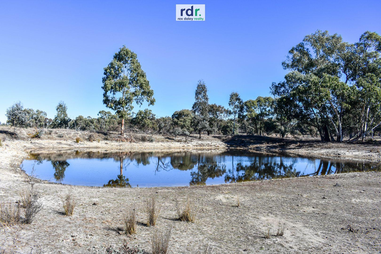 1178 Moredun Dams Road, Inverell NSW 2360, Image 2