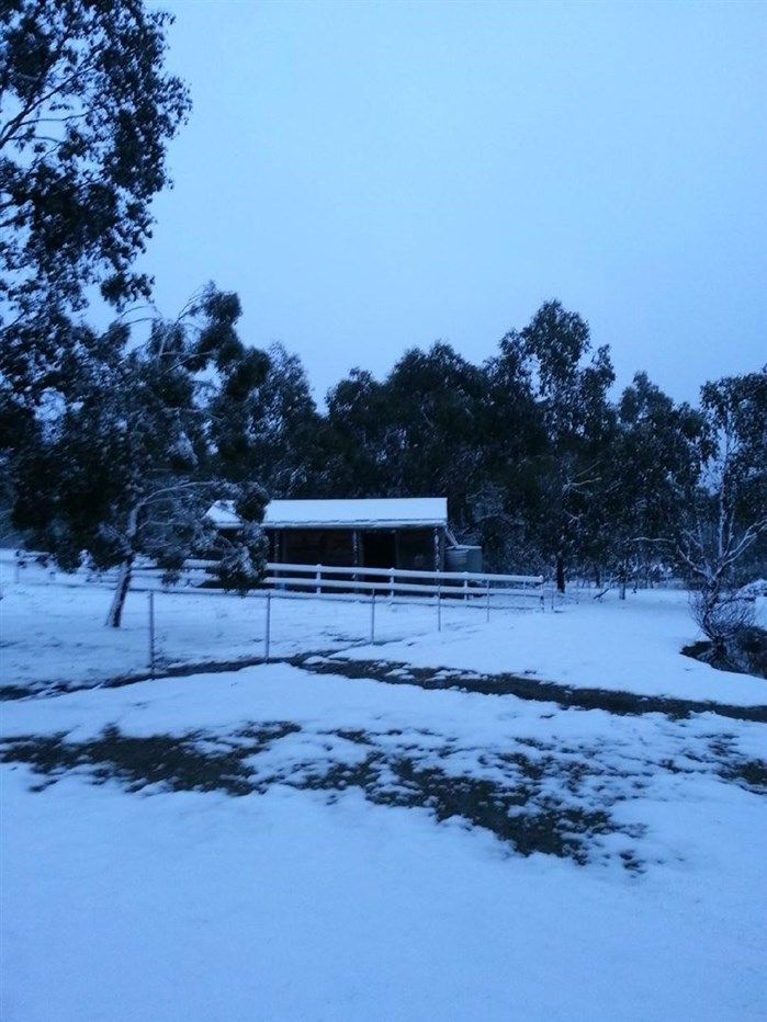 2777 Mansfield Whitfield Rd, Tolmie VIC 3723, Image 1