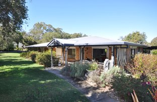 Picture of 43 McPhail Road, Narangba QLD 4504