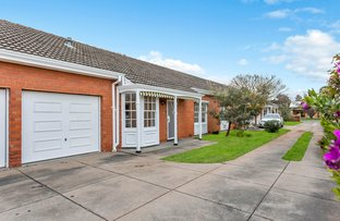 Picture of 3/5 Bakewell Street, Tusmore SA 5065