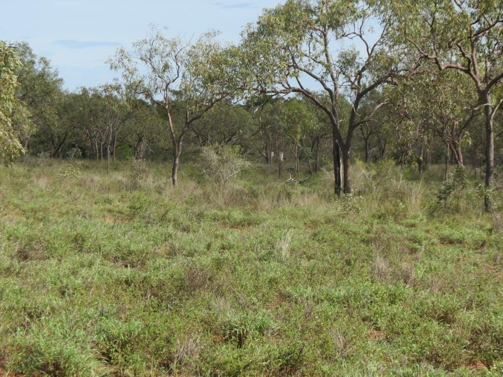 Wellington Estate, Charters Towers City QLD 4820, Image 2