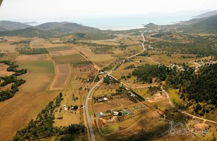 Picture of 1477 Shute Harbour Road, Cannon Valley QLD 4800