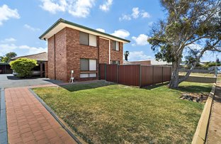Picture of 8/167 George Road, Beresford WA 6530