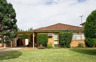 46 Greenmeadows Crescent, Toongabbie NSW 2146