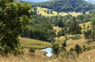 Picture of 207 Butchers Creek Road, Wherrol Flat NSW 2429