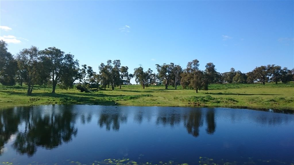 896 Red Gully Rd, Red Gully WA 6503, Image 2