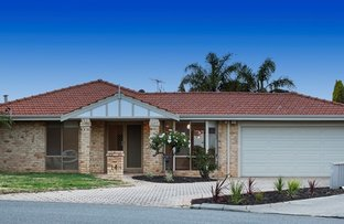 Picture of 14 Mears Place, Spearwood WA 6163