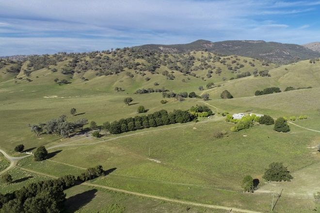 Picture of 367 Nimbo  Road, TUMUT NSW 2720