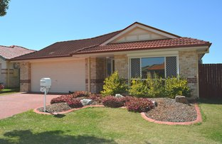 Picture of 31 Beresford Circuit, Bracken Ridge QLD 4017