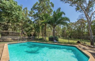 Picture of 18 Cairns Road, Camira QLD 4300