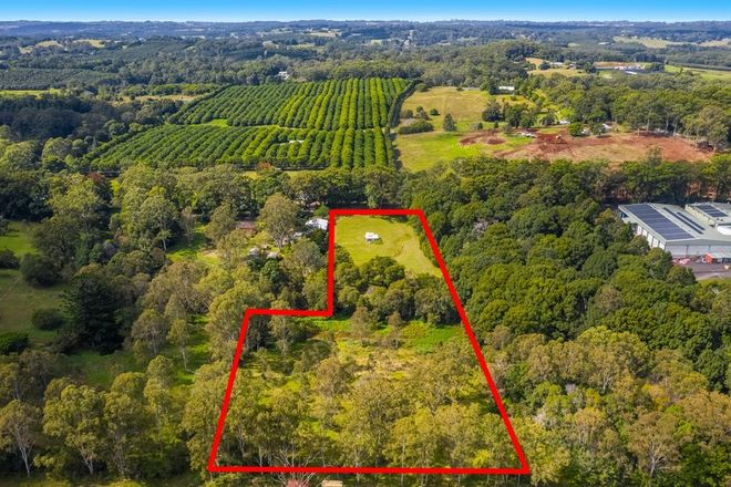 Picture of 37 Cowlong Road, LINDENDALE NSW 2480