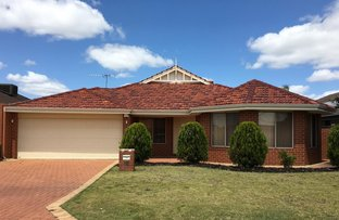 Picture of 16 Audley Place, Canning Vale WA 6155