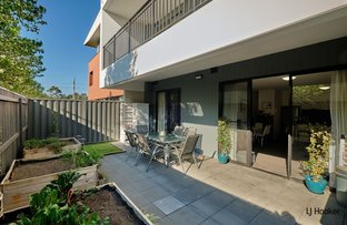 Picture of 21/37 Braybrooke Street, Bruce ACT 2617