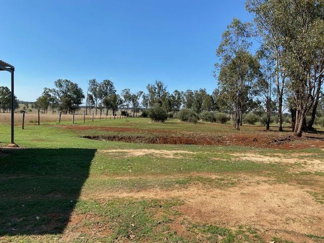 981 Stonelands Road, Stonelands QLD 4612, Image 1