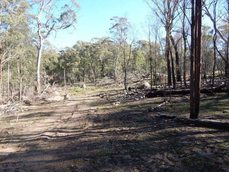 Lots 119-125/127 New Line Road, Glen Allen NSW 2631, Image 1