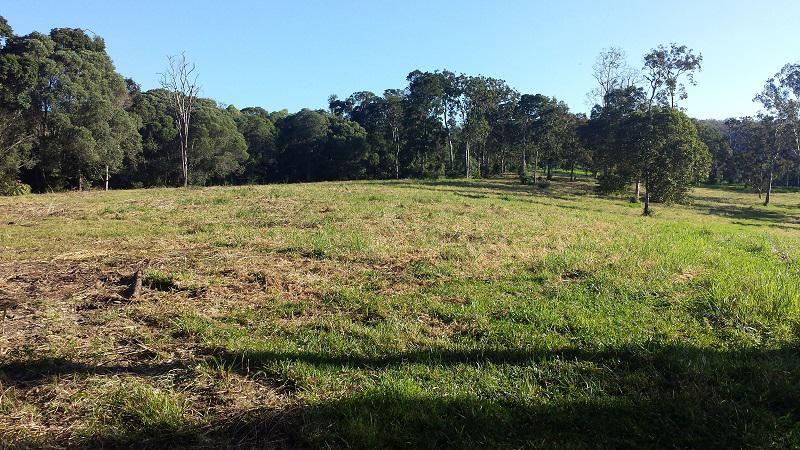 Lot 2 Boyles Road, Kuranda QLD 4881, Image 1