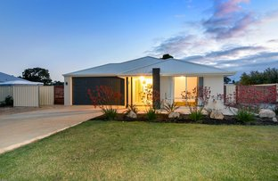 Picture of 45 Leschenaultia Circle, Donnybrook WA 6239