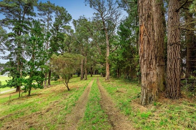 Picture of 427 Shands Road, MAIN RIDGE VIC 3928