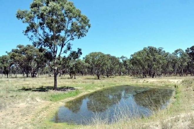 Picture of YARROWYCK NSW 2358
