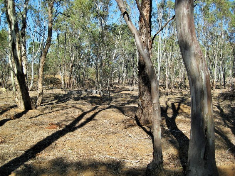 Lots 10J & 10H Section 5, Wedderburn VIC 3518, Image 1