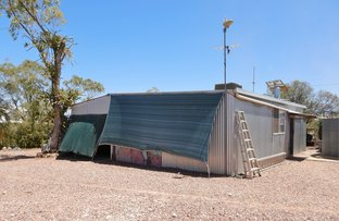 Picture of WLL 16346 New Chum, Lightning Ridge NSW 2834
