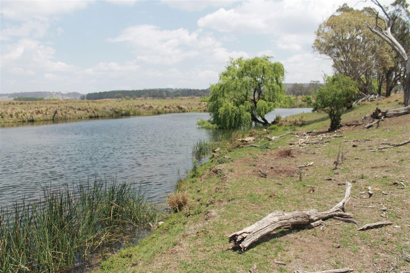1574 Shannon Vale Rd, Glen Innes NSW 2370, Image 1