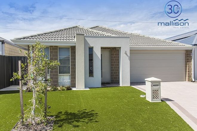 Picture of 8 Firefly Street, PIARA WATERS WA 6112